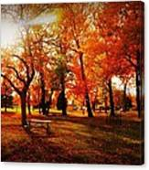 Autumn In The Park  Canvas Print
