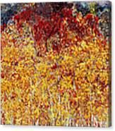 Autumn In The Pioneer Valley Canvas Print