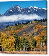 Autumn In The Tetons Canvas Print