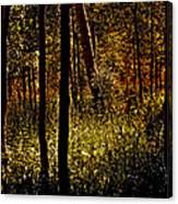 Autumn In Vail - Colorado Canvas Print