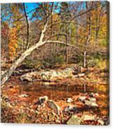 Autumn In Virginia Canvas Print