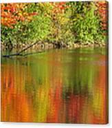 Autumn Iridescence Canvas Print