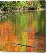 Autumn Jewel Canvas Print