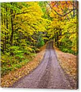 Autumn Journey Canvas Print