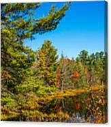 Autumn Lake 4 Canvas Print