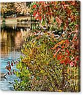 Autumn Lake And Swan Canvas Print
