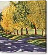 Autumn Lane Canvas Print