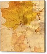 Autumn Leaf In Grunge Style Canvas Print
