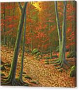 Autumn Leaf Litter Canvas Print