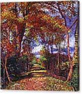 Autumn Leaf Road Canvas Print