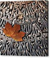 Autumn Leave On Iron Grate Canvas Print