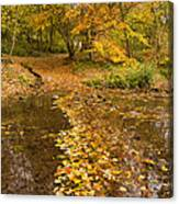 Autumn Leaves In Burn Vertical Canvas Print
