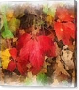 Autumn Leaves Photo Art 04 Canvas Print