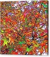 Autumn Leaves Through Filtered Sunlight II Canvas Print