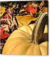 Autumn Leaves With Pumpkin Canvas Print