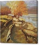 Autumn Light2 Canvas Print
