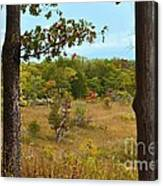 Autumn Look Out Canvas Print