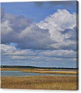 Autumn Marsh At Shell Island Canvas Print