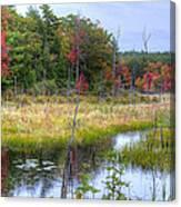 Autumn Marsh Canvas Print
