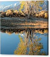 Autumn Mirrored Canvas Print