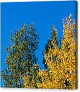 Autumn Mix - Featured 3 Canvas Print