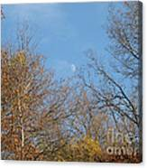 Autumn Moonrise Canvas Print