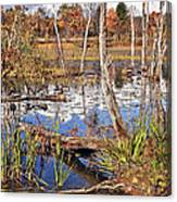 Autumn Morning At The Marsh Canvas Print