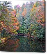 Autumn Mountain Stream Canvas Print