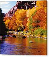 Autumn Oak Creek  Canvas Print