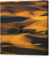 Autumn Of Rolling Hills Canvas Print