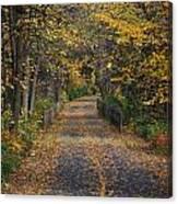 Autumn On Bike Trail  Canvas Print