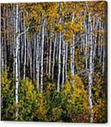 Autumn On Mcclure Pass Canvas Print