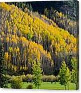Autumn On The Links Canvas Print