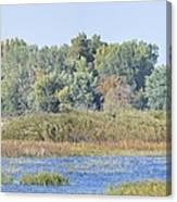 Autumn On The Marsh Canvas Print