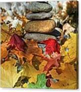 Autumn On The Rocks 2 Canvas Print
