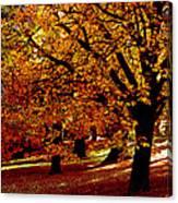 Autumn On Wombat Hill II Canvas Print