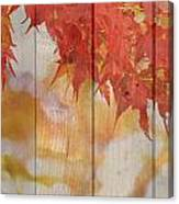 Autumn Outdoors 2 Of 2 Canvas Print
