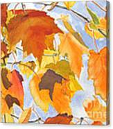 Autumn Outside My Window Canvas Print