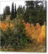 Autumn Panorama Canvas Print