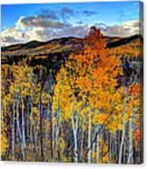 Autumn Pass Canvas Print