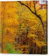 Autumn Peak Colors Canvas Print