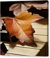 Autumn Piano 13 Canvas Print