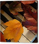 Autumn Piano 2 Canvas Print
