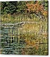 Autumn Pond Scene Canvas Print