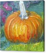 Autumn Pumpkin Canvas Print