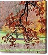 Autumn Rainbow Canvas Print