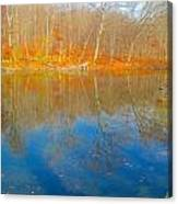 Autumn Reflection 2 Canvas Print