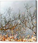 Autumn Reflections On Alloway Lake Nj Canvas Print