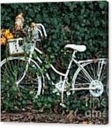 Autumn Ride Canvas Print