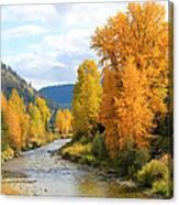 Autumn River In Montana Canvas Print